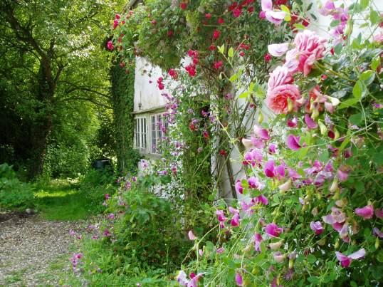 The front door, hidden by flowers - how we first saw it.